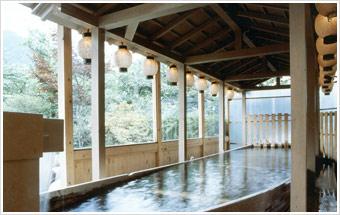 ryokan park hotels bath